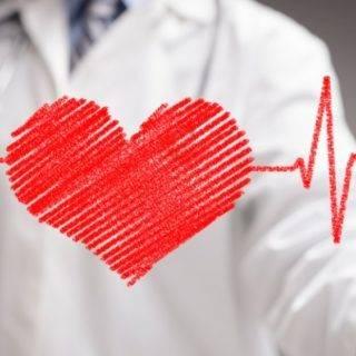 Corazón y Aparato Circulatorio